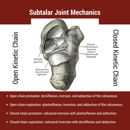 Talocrural And Subtalar Joints Clinical Application